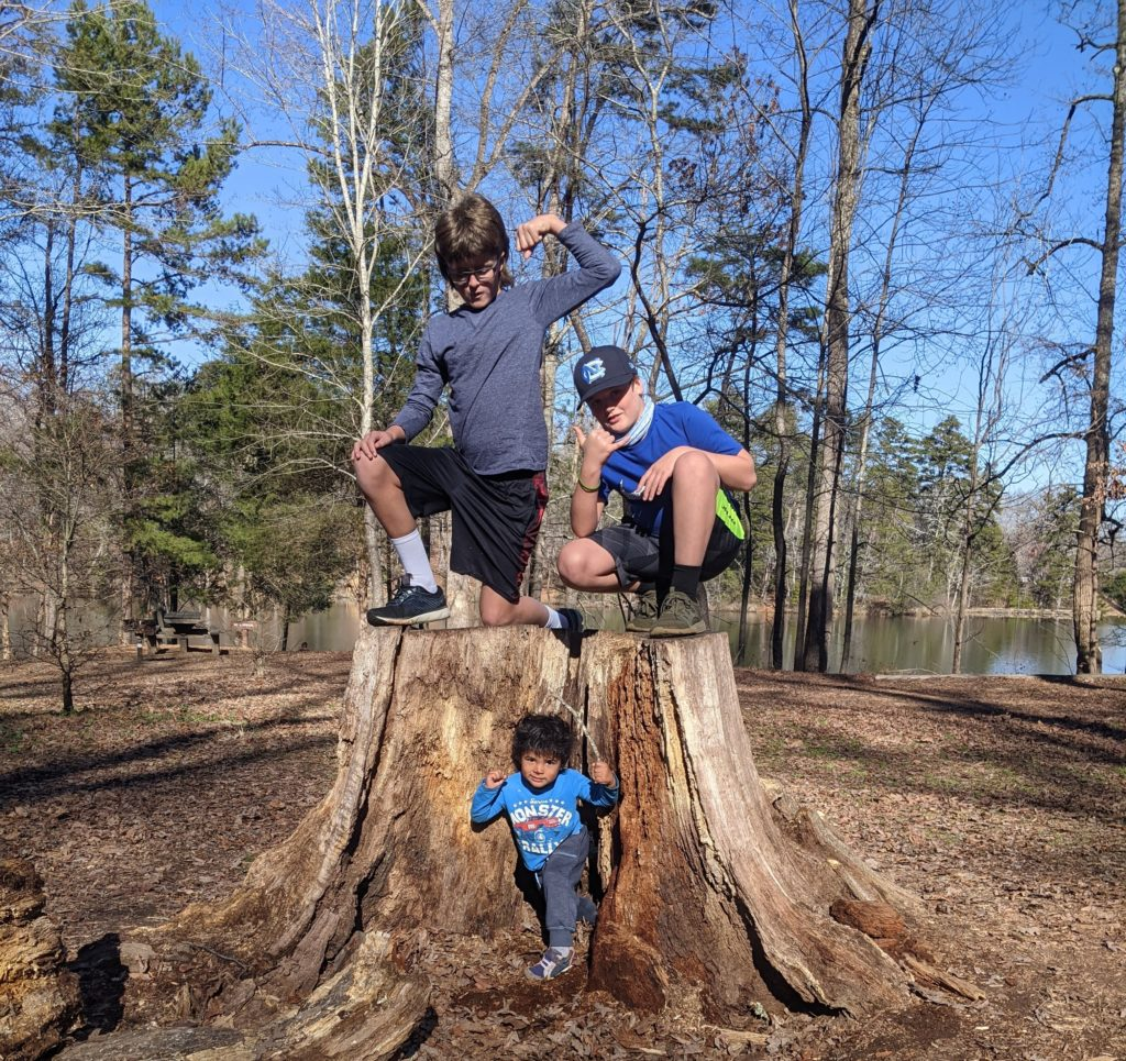 10 and 12 year old sons on top of a large tree stump. 3 year old is on the ground in the middle of the stump. They are all flexing muscles and posing for the picture.